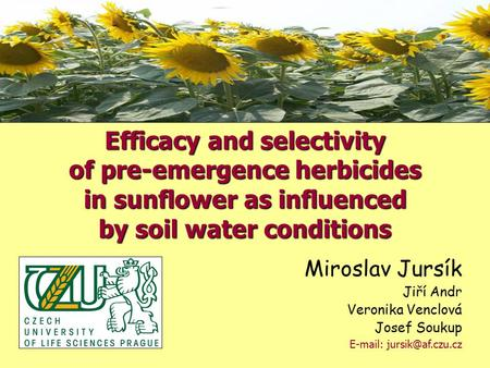 Miroslav Jursík Jiří Andr Veronika Venclová Josef Soukup   Efficacy and selectivity of pre-emergence herbicides in sunflower as.