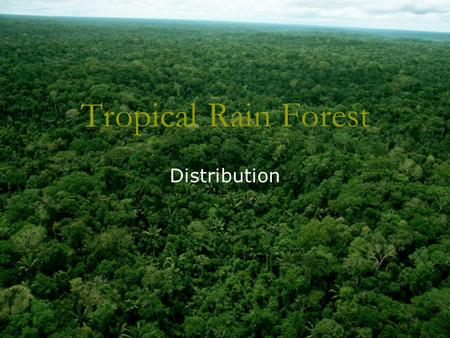 Tropical Rain Forest Distribution. Where are tropical rain forest? The Equator Tropic of Cancer Tropic of Capricorn Tropical Rain Forest World distribution.
