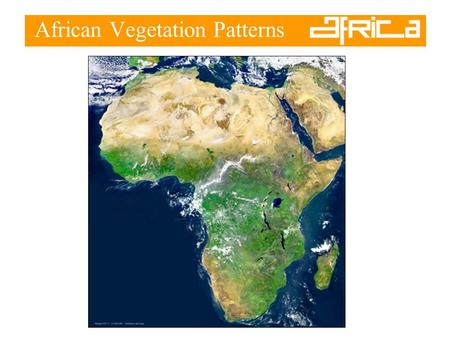 African Vegetation Patterns. Vegetation Zones –The majority of Africa lies within the tropics –Wet near the equator –Drier moving north and south.