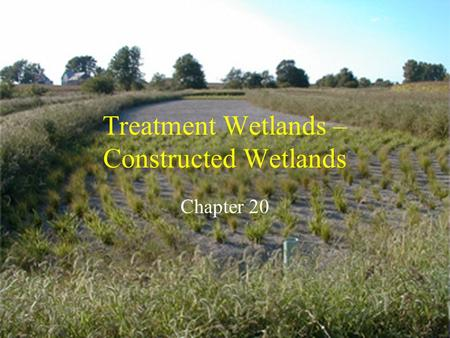 Treatment Wetlands – Constructed Wetlands Chapter 20.