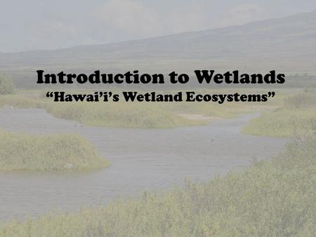 "Introduction to Wetlands ""Hawai'i's Wetland Ecosystems"""