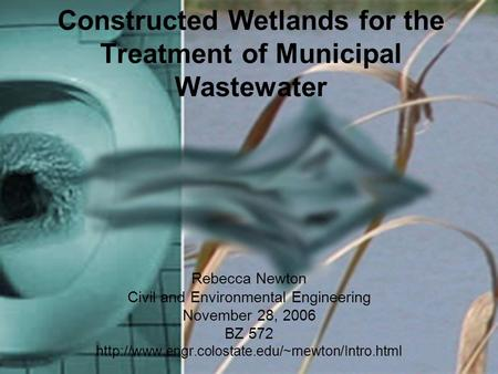 Constructed Wetlands for the Treatment of Municipal Wastewater Rebecca Newton Civil and Environmental Engineering November 28, 2006 BZ 572