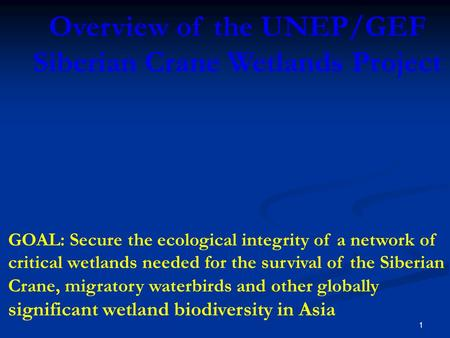 1 Overview of the UNEP/GEF Siberian Crane Wetlands Project GOAL: Secure the ecological integrity of a network of critical wetlands needed for the survival.