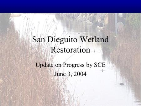 San Dieguito Wetland Restoration Update on Progress by SCE June 3, 2004.