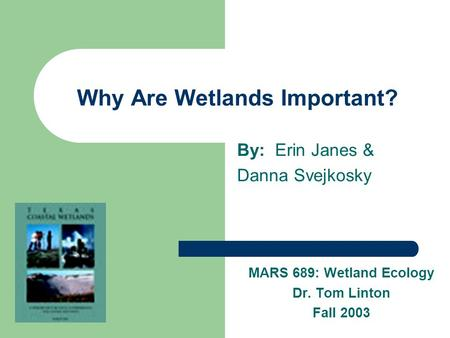 Why Are Wetlands Important? By: Erin Janes & Danna Svejkosky MARS 689: Wetland Ecology Dr. Tom Linton Fall 2003.