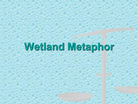 Wetland Metaphor. Define: Wetland A wetland is an area that is covered with water for a large part of the year.