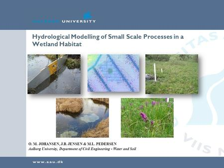 Hydrological Modelling of Small Scale Processes in a Wetland Habitat O. M. JOHANSEN, J.B. JENSEN & M.L. PEDERSEN Aalborg University, Department of Civil.