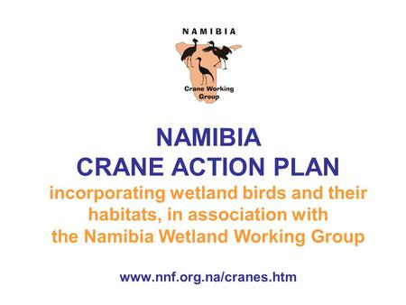NAMIBIA CRANE ACTION PLAN incorporating wetland birds and their habitats, in association with the Namibia Wetland Working Group www.nnf.org.na/cranes.htm.