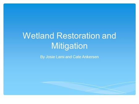 Wetland Restoration and Mitigation By Josie Lami and Cate Ankersen.