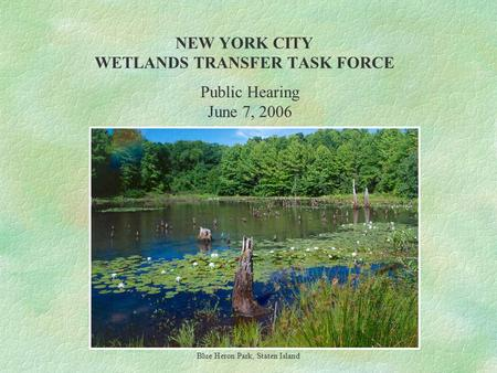 NEW YORK CITY WETLANDS TRANSFER TASK FORCE Blue Heron Park, Staten Island Public Hearing June 7, 2006.