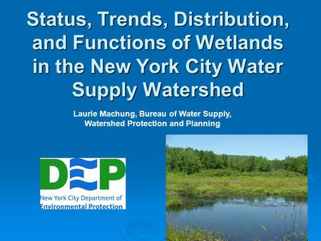 Status, Trends, Distribution, and Functions of Wetlands in the New York City Water Supply Watershed Laurie Machung, Bureau of Water Supply, Watershed Protection.