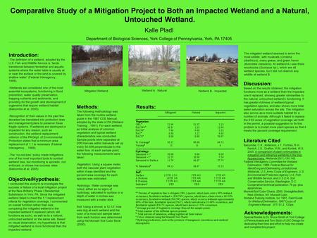Comparative Study of a Mitigation Project to Both an Impacted Wetland and a Natural, Untouched Wetland. Kalle Pladl Department of Biological Sciences,