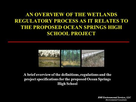 Environmental Consultants BMI Environmental Services, LLC AN OVERVIEW OF THE WETLANDS REGULATORY PROCESS AS IT RELATES TO THE PROPOSED OCEAN SPRINGS HIGH.