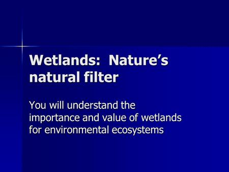 Wetlands: Nature's natural filter You will understand the importance and value of wetlands for environmental ecosystems.
