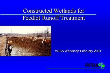 Constructed Wetlands for Feedlot Runoff Treatment MSAA Workshop February 2001.