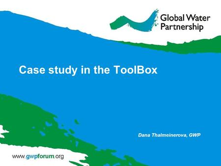 Case study in the ToolBox Dana Thalmeinerova, GWP.
