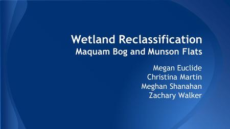 Wetland Reclassification Maquam Bog and Munson Flats Megan Euclide Christina Martin Meghan Shanahan Zachary Walker.
