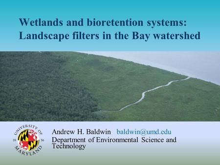 Wetlands and bioretention systems: Landscape filters in the Bay watershed Andrew H. Baldwin Department of Environmental Science and Technology.