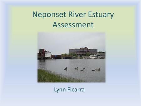Neponset River Estuary Assessment Lynn Ficarra. General Characteristics From Walter Baker Dam to Dorchester Bay 1 7 km long 2 25-250 m wide at low tide,