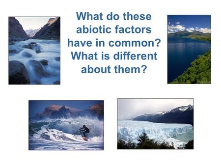 What do these abiotic factors have in common? What is different about them?
