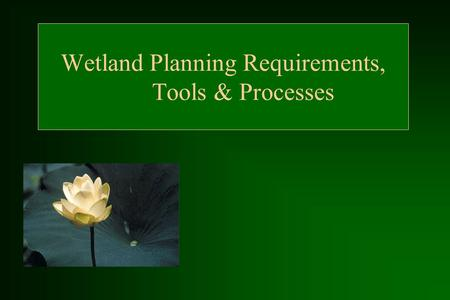 Wetland Planning Requirements, Tools & Processes.