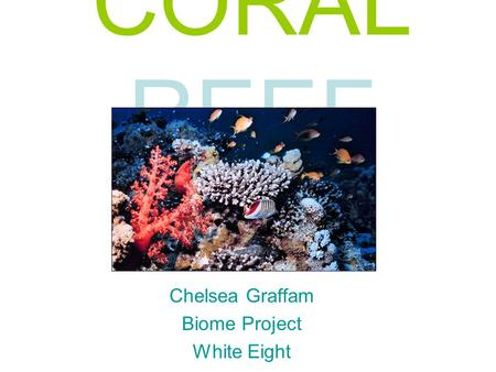 CORAL REEF Chelsea Graffam Biome Project White Eight.