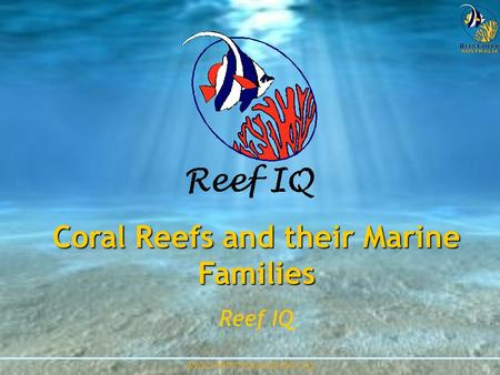 Www.reefcheckaustralia.org Coral Reefs and their Marine Families Reef IQ.