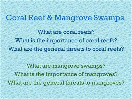 mangrove swamps importance essay 'mangrove forests are important because they: protect coastlines against erosive  wave action and strong coastal winds, and serve as natural barriers against.