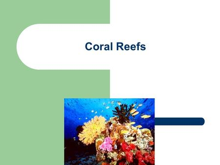 Coral Reefs. Corals are Colonial Organisms Almost all corals are colonial organisms. This means that they are composed of hundreds to hundreds of thousands.