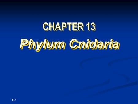 13-1 CHAPTER 13 Phylum Cnidaria. Copyright © The McGraw-Hill Companies, Inc. Permission required for reproduction or display. 13-2.
