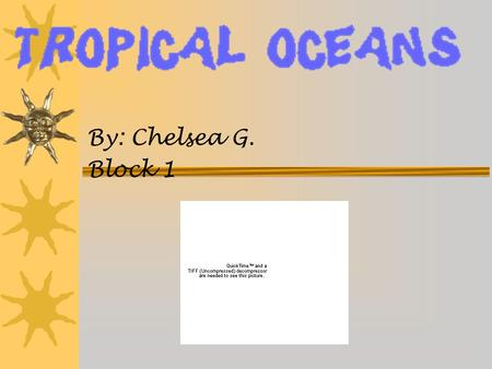 By: Chelsea G. Block 1. Location of Coral Reefs and Tropical Oceans The Tropical Oceans and Coral Reefs are in Central America, Jamaica, the eastern side.