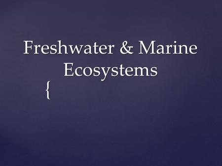 { Freshwater & Marine Ecosystems.  Keep in mind that factors such as temperature, sunlight, oxygen, and nutrients determine which organisms live in which.