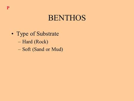 BENTHOS Type of Substrate –Hard (Rock) –Soft (Sand or Mud) P.
