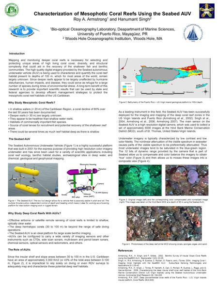 Characterization of Mesophotic Coral Reefs Using the Seabed AUV Roy A. Armstrong 1 and Hanumant Singh 2 1 Bio-optical Oceanography Laboratory, Deapartment.