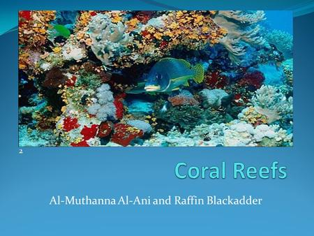 Al-Muthanna Al-Ani and Raffin Blackadder 2. Coral Reefs Around the World 1.