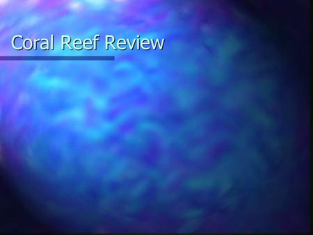 Coral Reef Review. Provides a Habitat Provides a habitat for a wide variety of marine organisms. Provides a habitat for a wide variety of marine organisms.
