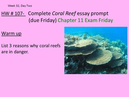 HW # 107- Complete Coral Reef essay prompt (due Friday) Chapter 11 Exam Friday Warm up List 3 reasons why coral reefs are in danger. Week 32, Day Two.