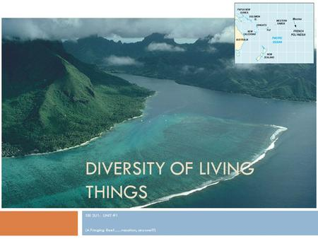 DIVERSITY OF LIVING THINGS SBI 3U1: UNIT #1 (A Fringing Reef.......vacation, anyone??)