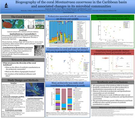 Biogeography of the coral Montastraea cavernosa in the Caribbean basin and associated changes in its microbial communities Jessica K. Jarett 1*, Cara L.