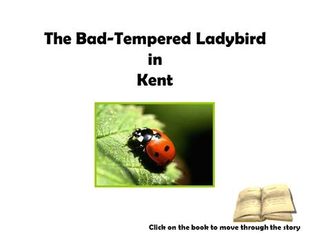The Bad-Tempered Ladybird in Kent