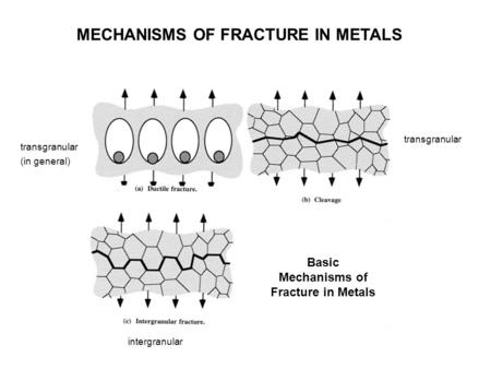 Basic Mechanisms of Fracture in Metals MECHANISMS OF FRACTURE IN METALS transgranular (in general) intergranular transgranular.