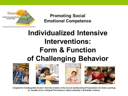 Promoting Social Emotional Competence Individualized Intensive Interventions: Form & Function of Challenging Behavior.