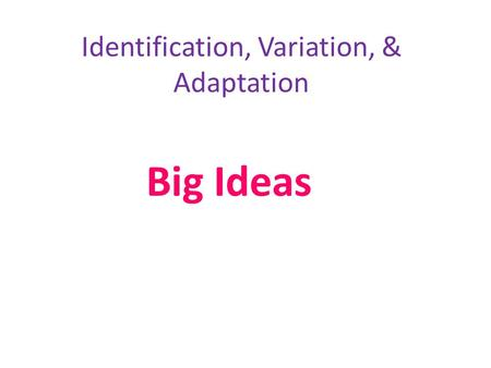 Identification, Variation, & Adaptation Big Ideas.