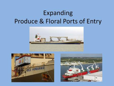 Expanding Produce & Floral Ports of Entry. Imported Fruits, Vegetables, & Floral Products U.S. consumers expect a wide variety and year- round supplies.