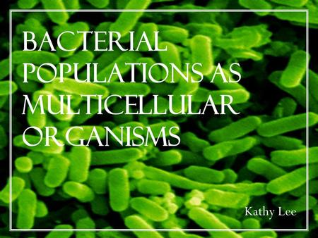 Bacterial Populations as Multicellular Organisms Kathy Lee.