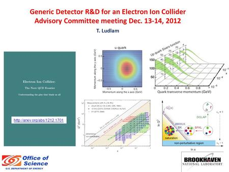 Generic Detector R&D for an Electron Ion Collider Advisory Committee meeting Dec. 13-14, 2012 T. Ludlam