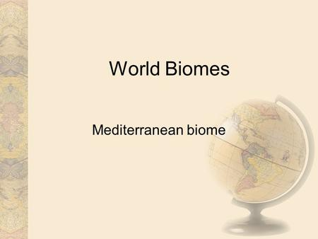 World Biomes Mediterranean biome. Climate In the winter the Mediterranean climate, is mild and moist, but not rainy. During the summer it is very hot.