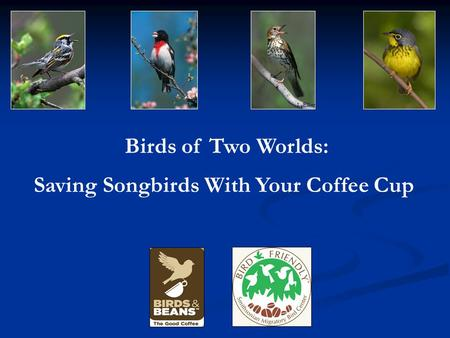 Birds of Two Worlds: Saving Songbirds With Your Coffee Cup L. Elliot.