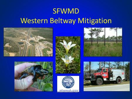 SFWMD Western Beltway Mitigation. Outline 1.Background 2.Mitigation Plan / Options 3.Future Projects / Available Funding Plants observed in Shingle Creek.