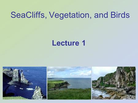 SeaCliffs, Vegetation, and Birds Lecture 1. SeaCliffs, Vegetation, and Birds Hard rock cliffs Resistant bedrock (geology) Also, Soft rock cliffs Unconsolidated.